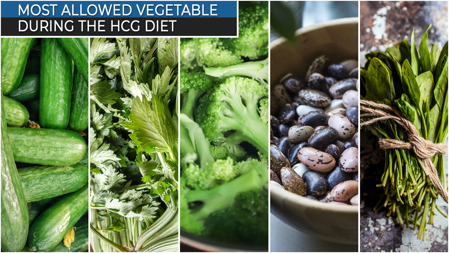 MOST ALLOWED VEGETABLE DURING THE HCG DIET