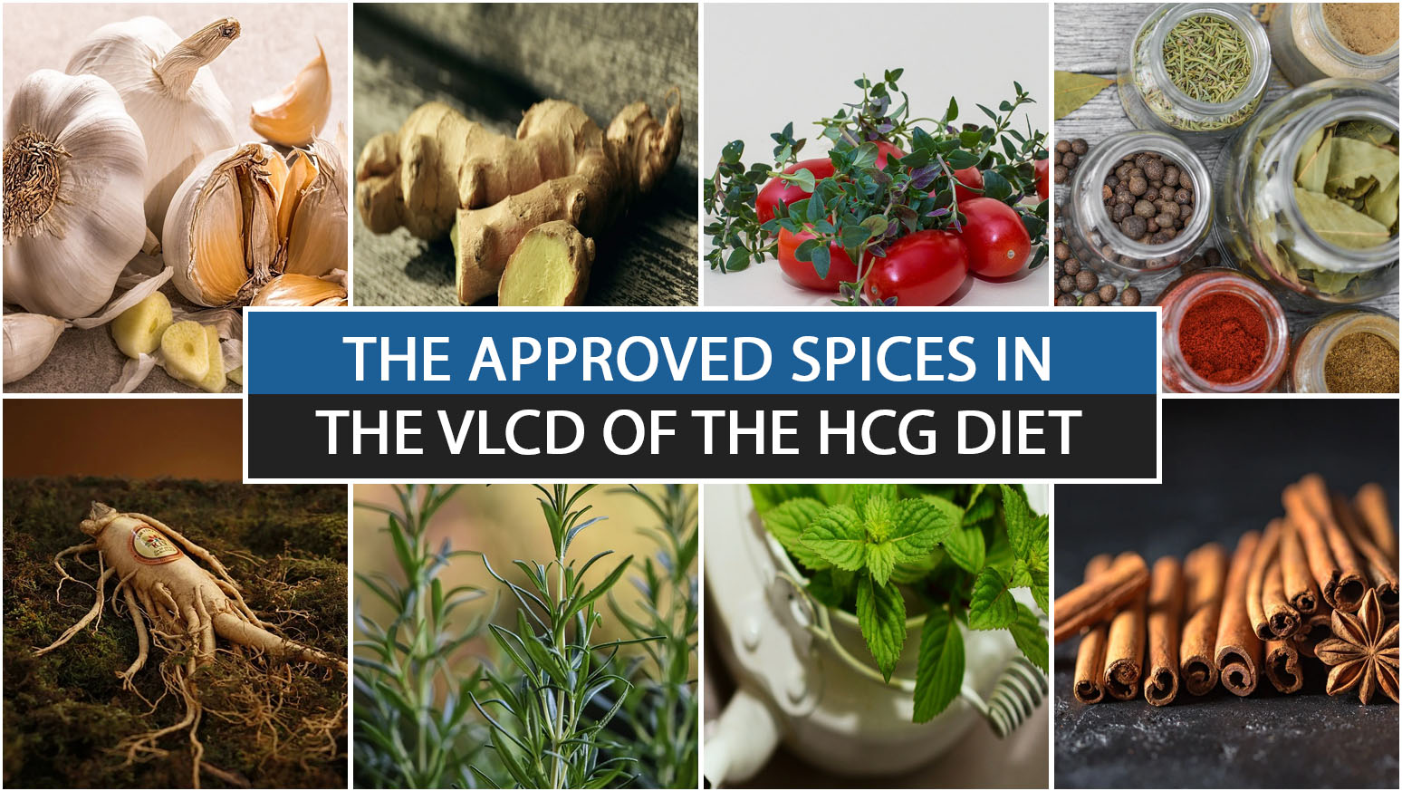 THE APPROVED SPICES IN THE VLCD OF THE HCG DIET