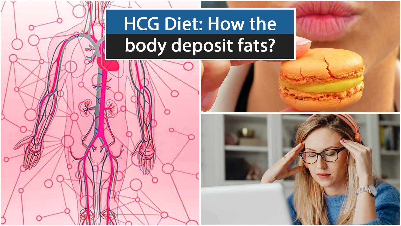 HCG Diet How the body deposit fats